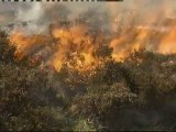 Strong winds stoke wildfires