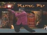 Al Hikmah School of Kung Fu