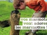 Vos marmots vont adorer les marmottes ! Spot pub France Montagnes