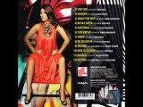 Sibel Can - Yok Yok [ Album 2011 Seyyah]  [Söz & Müzik: Sinan Akçıl]