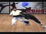 Al Hikmah School of Kung Fu International