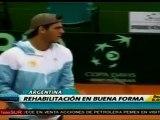 Del Potro confía en recuperarse para Roland Garros