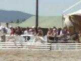 obstacle cheval d'azur samedi