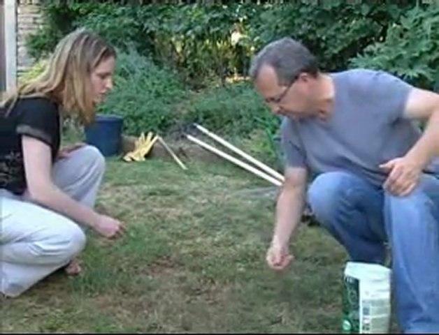 Réparer sa pelouse, regarnir son gazon