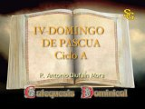 Videocatequesis IV domingo de pascua