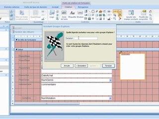 Choix multiple et Checkbox dans Microsoft Access