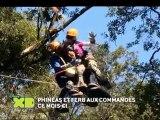 Le Mois Phinéas et Ferb sur Disney XD au mois de juin !