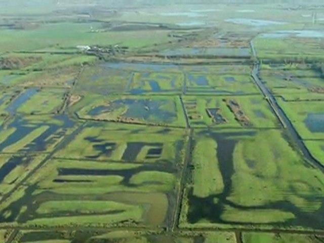 Sauvons les Marais de l'Ouest ! Un partenariat exemplaire dans le domaine du mécénat environnemental