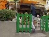 TV3 - gosSOS - Video blog Lola