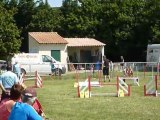 Brownie - SPGF Avignon - 1er parcours Agility