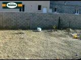 Achat Vente Maison  Arles  13200 - 83 m2