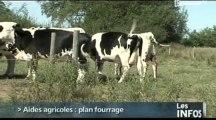 Agriculture: La Basse-Normandie déclenche le Plan fourrage