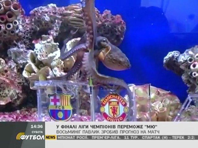FOOTBALL NEWS. (28.05.2011)