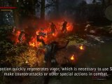 The Witcher 2: Assassins of Kings - Polish Diary 5: ...
