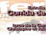 Féria d'Alès 2011 - Corrida de Rejon - dimanche 5 Juin
