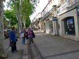 """""""Fleurs de Pavés"""" : les autocollants dans Cahors pendant Cahors Juin Jardins"""