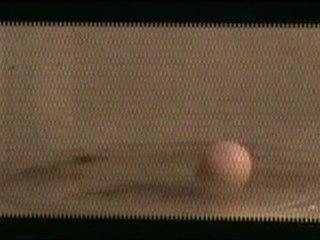 Yumurta mikrodalga fırına atılırsa.....