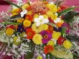 Fleurs format paysage LAOS