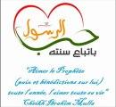 """""""Aimer le Prophète صلى الله عليه و سلم toute l'année, l'aimer toute sa vie""""_CHEIKH IBRAHIM MULLA"""