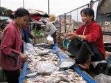Marché aux poissons LAOS VIETNAM