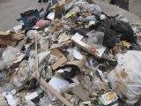 le Parti des Verts pour le Progrès soutient les agents municipaux, mais pas les déchets !