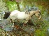 Photos d'eau par Schleich-Photos (montage par HorseGold)