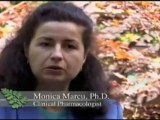 Zija Moringa Discovery Channel Video