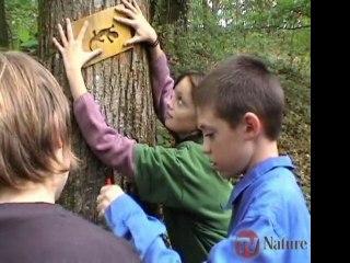 Un chemin une école - Balisage du circuit - TV Nature