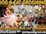Best Dog And Cat Grooming Pet Supplies  Grooming, Local! Pet