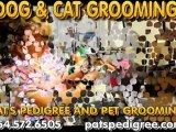 Best Dog And Cat Grooming Pet Supplies  Grooming, Dog Groomi