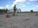 Poney-club. Les chevaux. Sauts. 1) 25/06/2011 SDC10639