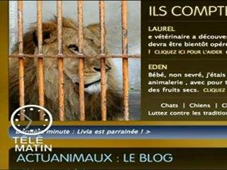 Reportage Actuanimaux  - Télématin - 01/07/2011