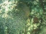 plongee recycleur grande cale lac du bourget deep ccr tartiflette team