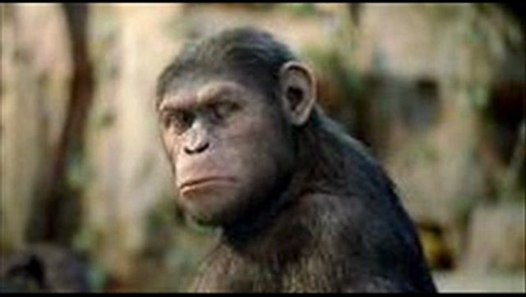 Planet Der Affen 1 Stream