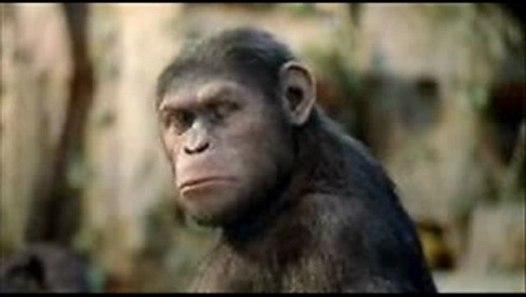 Planet Der Affen Prevolution Stream Hd