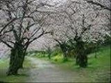 WALKING IN THE RAIN ↝ TBNYD13