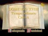 Videocatequesis domingo XVIII t. ordinario-A