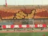 0380 - Ecran humain géant dans un stade de foot