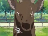 Tsukasa having Deer Issues (Tsukasa Attacked by Deer;Lucky Star; English Dub)