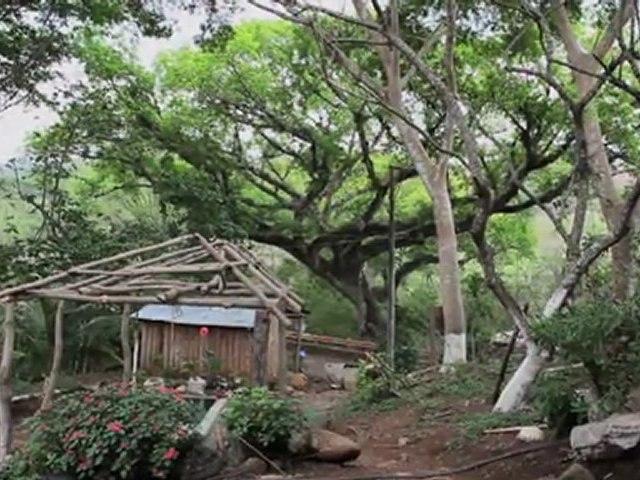 Salvador : Plus loin que le soleil