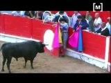 PACMA denuncia empresari que donà mort al bou