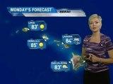 Hawaii Vacation Forecast - 08/05/2011
