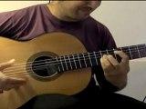 Harry Potter Hedwig's Theme por Buleria (Flamenco Guitar)