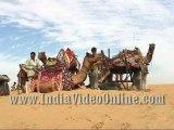 Decorated camel01, Camel festival