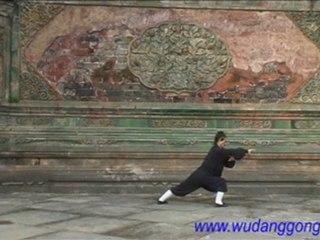 Wudang Kung Fu Tai He Quan 武当太和拳