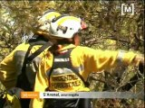 Incendi a s'Arenal