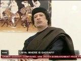 Libya - Battle for Tripoli(Euronews-24.Aug.2011)