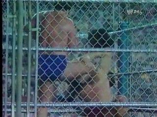 Bruno Sammartino vs. Larry Zbyszko - Steel Cage Match