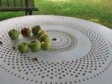la danse des pommes