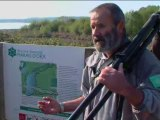 Le marais d'Orx : une histoire d'eau, une histoire d'hommes... - Landes